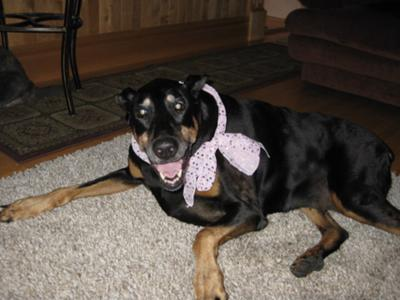 Beautiful Leya in her special scarf..