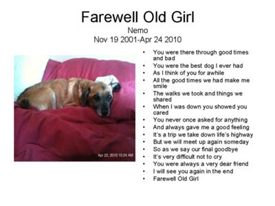 Pet Loss Quotes And Poems