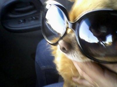 Andre younger with some shades on ( :